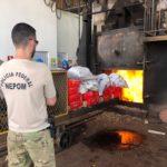 Polícia Federal incinera cinco toneladas de drogas