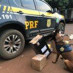 PRF e Correios realizam operação conjunta para interceptar encomendas com drogas