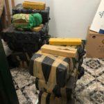Dois são presos e 393kg de drogas apreendidas durante ação da Polícia Civil